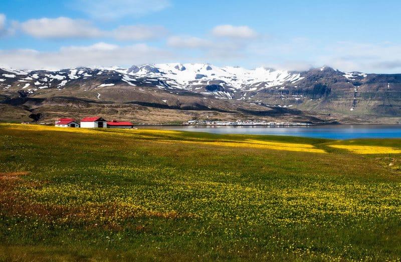 Le printemps en Islande