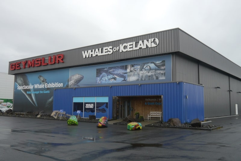 Musée des baleines à Reykjavik