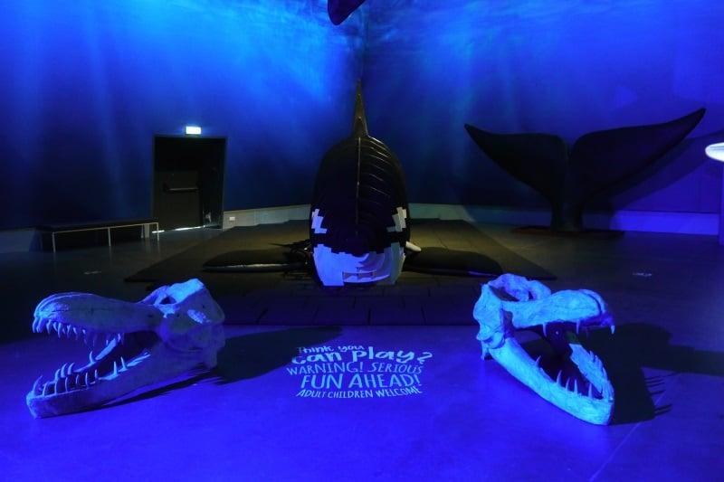 Découvrez le musée des baleines