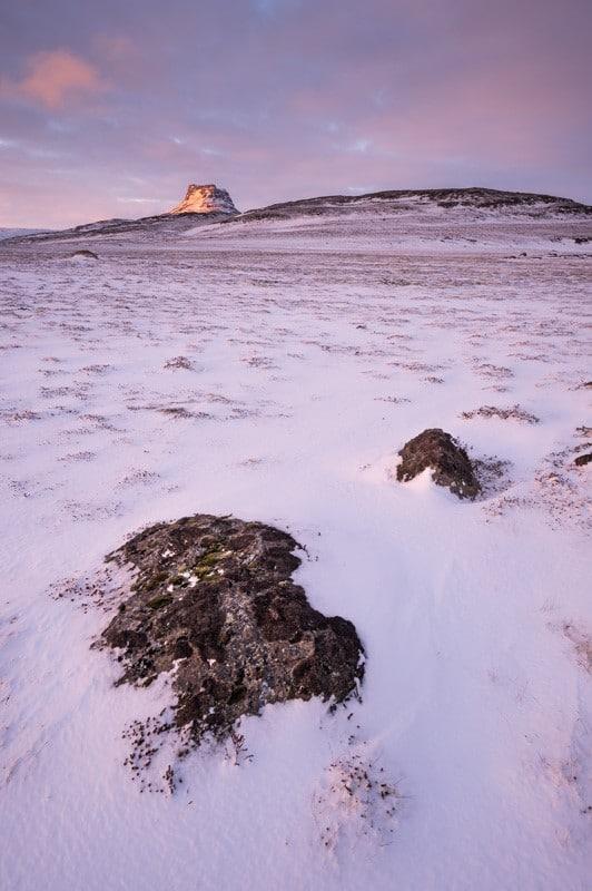 La toundra islandaise au lever du jour